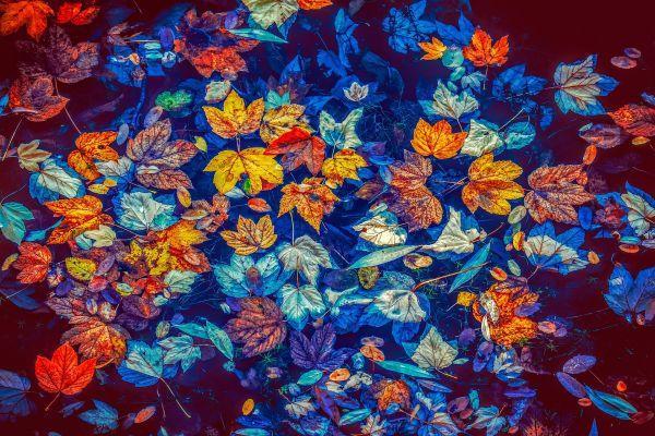 Morbo di Parkinson: importanti correlazioni con la salute intestinale