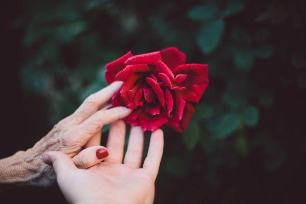 Dolore vulvare in età avanzata: con consigli, cure e amore si può migliorare