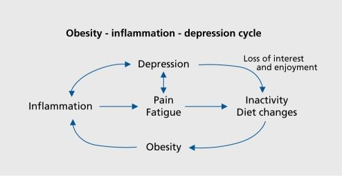 The obesity-inflammation-depression cycle. In: Shelton RC, Miller AH., Inflammation in depression: is adiposity a cause?, Dialogues Clin Neurosci. Dialogues Clin Neurosci;13 (1): 41-53