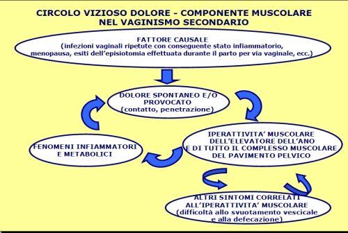 Fig. 1 - Circolo vizioso dolore-componente muscolare nel vaginismo secondario